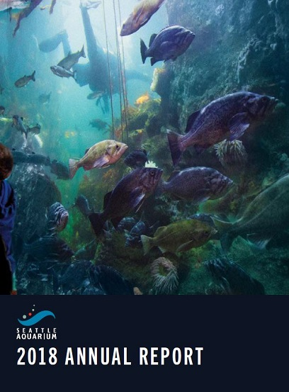 Cover of 2018 annual report showing fish underwater