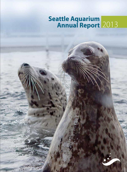 Cover of 2013 annual report showing harbor seals