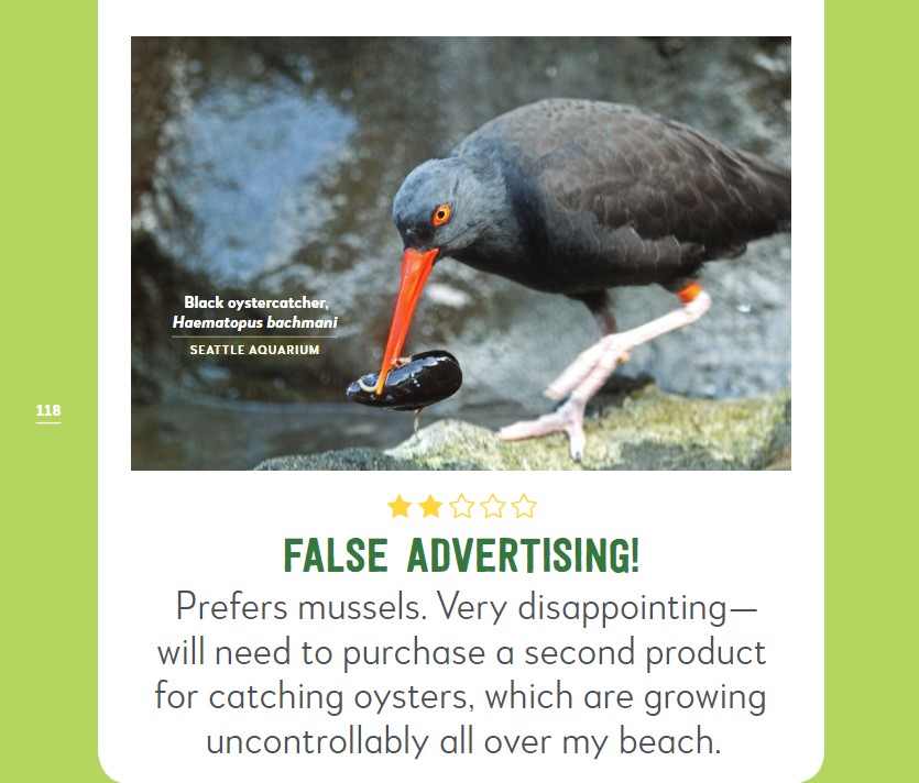 "Photo of black oystercatcher with two-star rating. ""False advertising. Prefers mussels."""