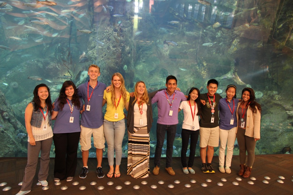 Youth Ocean Advocates