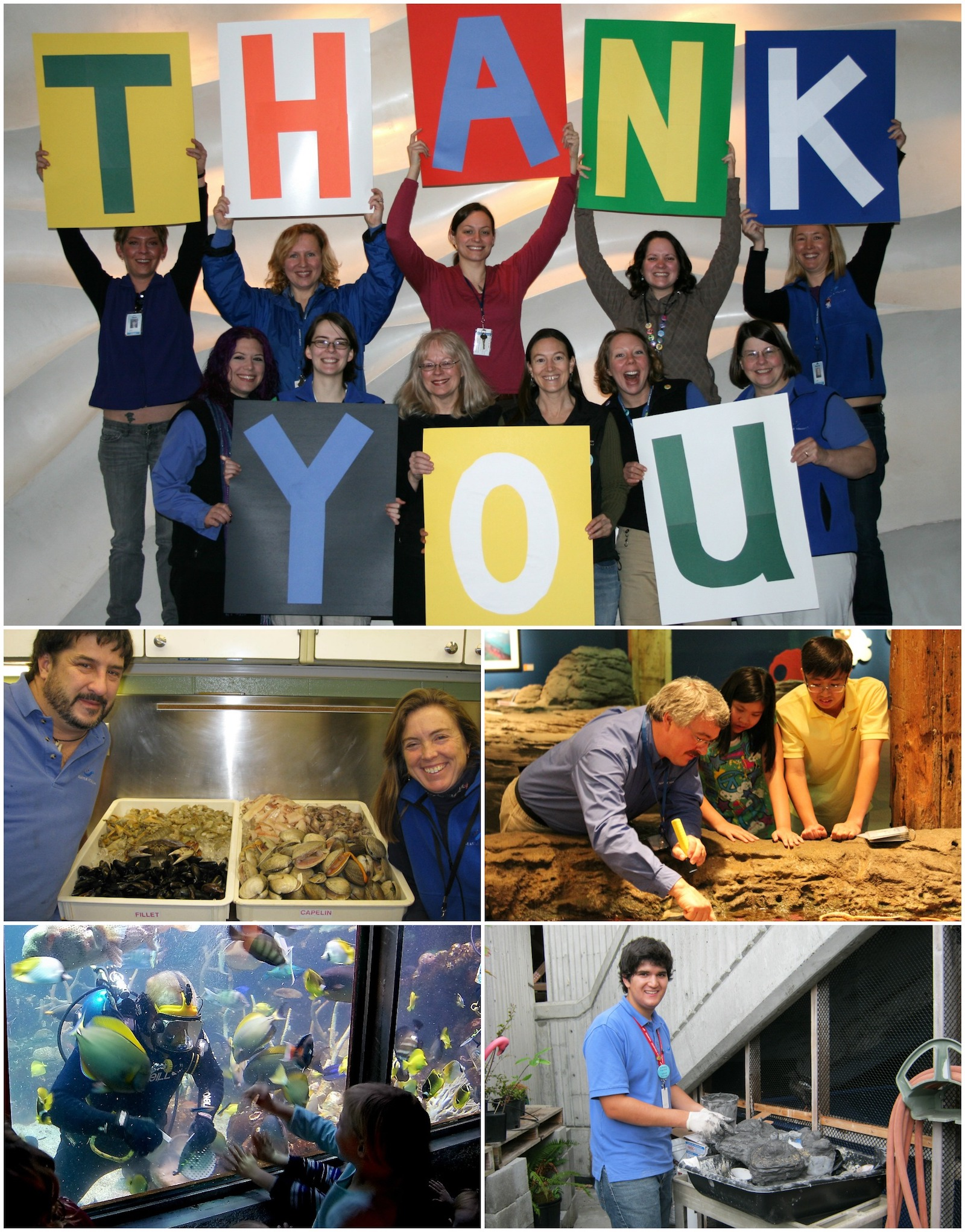 Celebrating Seattle Aquarium volunteers during National Volunteer Appreciation Week