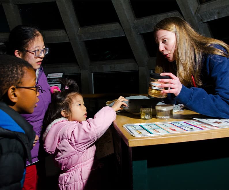 A Seattle Aquarium staff member showing animal biofacts to three young guests.