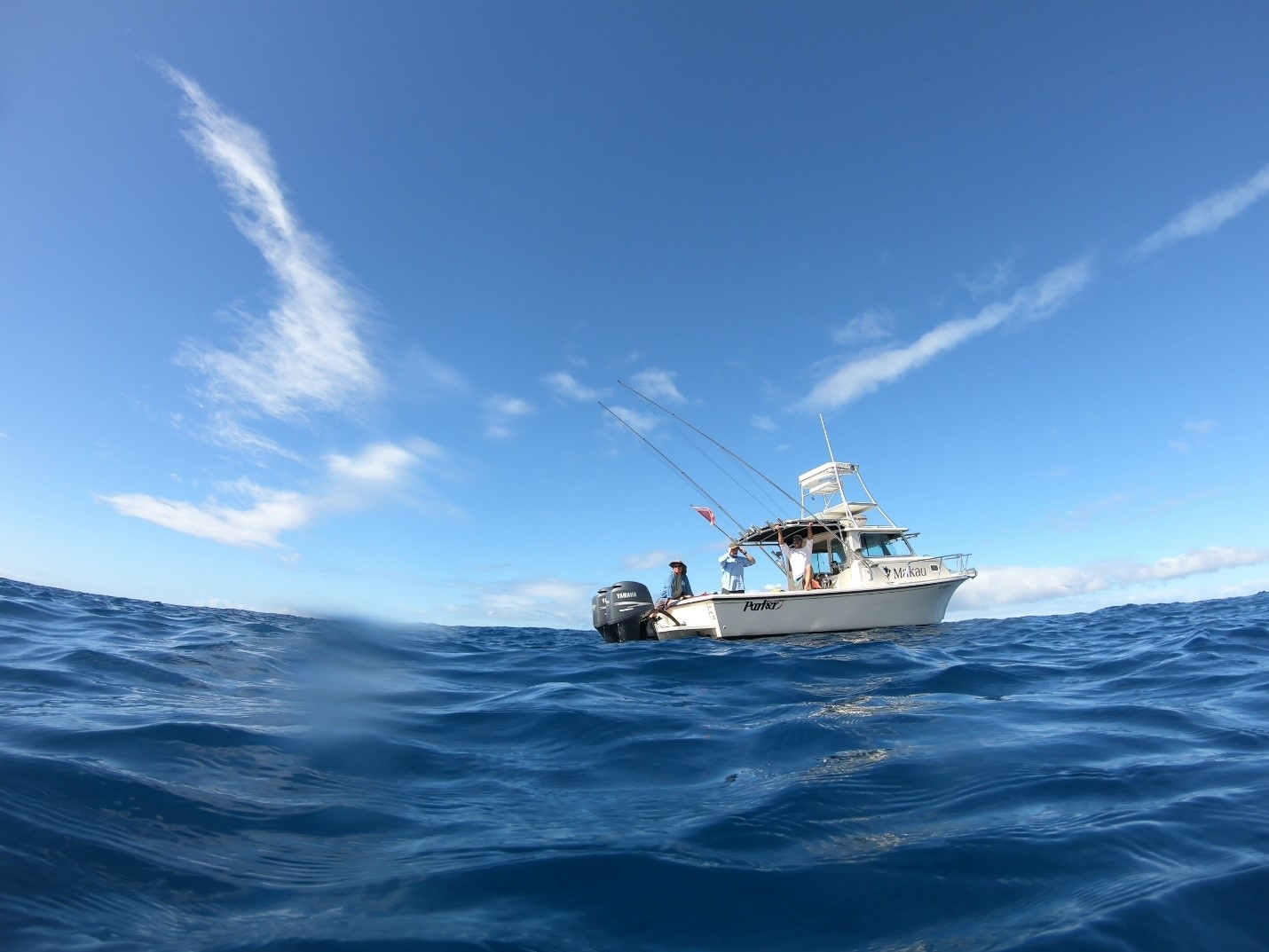 Mark Johnston's boat waiting for divers to finish surveying site 8, near Captain Cook.