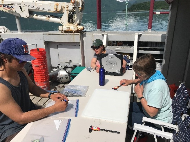 Brian U., Heather and Brenda getting set up to measure mussel and clam species from the soft sediment and mussel sites.