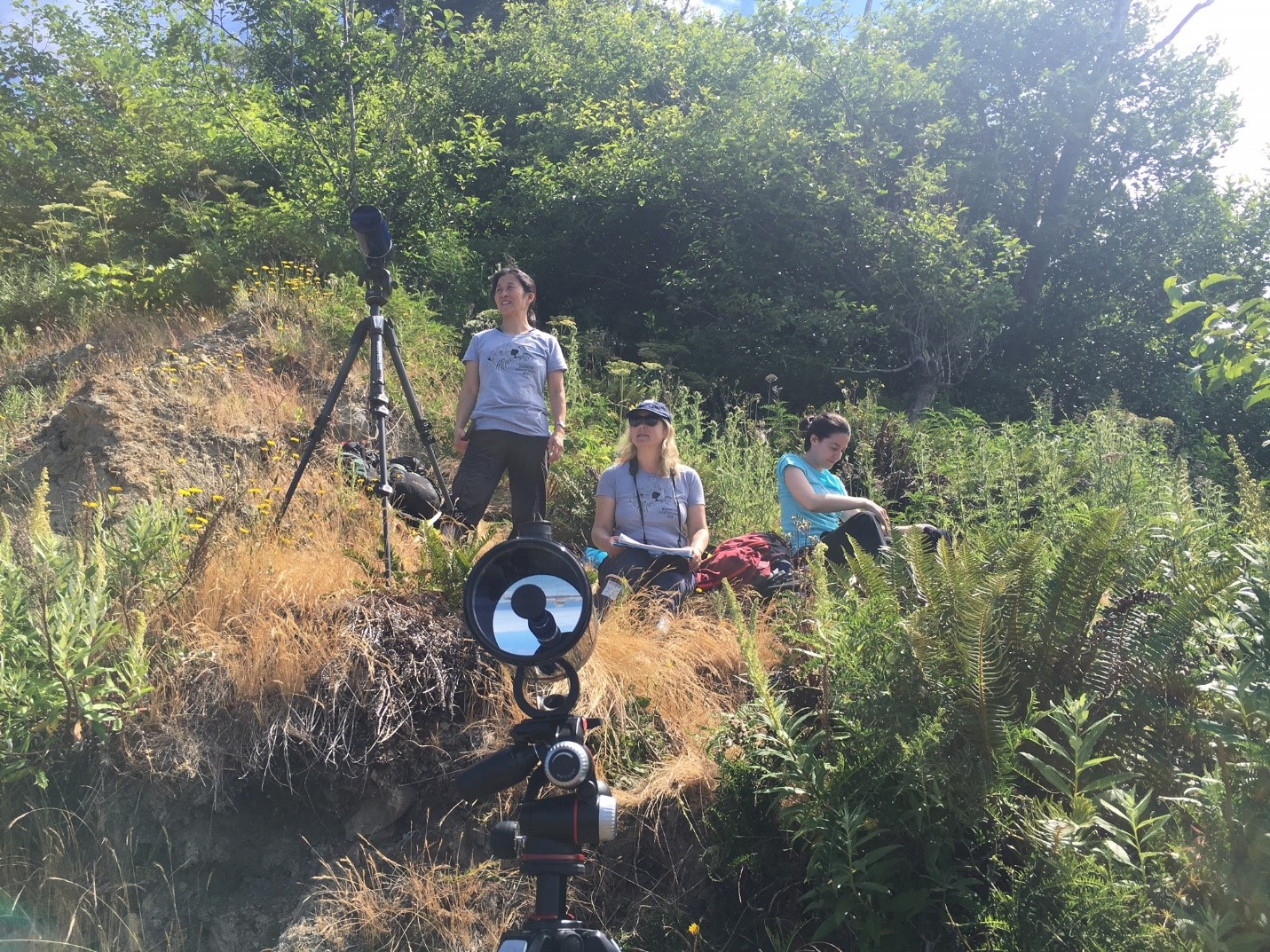 Three researchers stand on a hill near a spotting scope