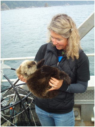 Seattle Aquarium staff members participate in sea otter research