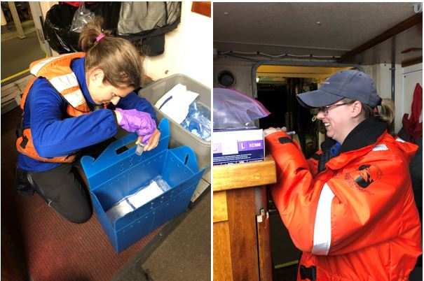 Seattle Aquarium bird and mammal staff, Sara and Cheryl, assist with fecal collection.