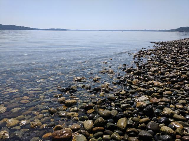 Puget Sound beach
