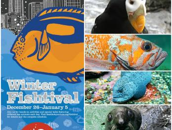 Join the Seattle Aquarium for Winter Fishtival December 26-January 5