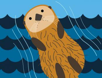 Sea otters holding hands graphic